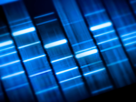 DNA test sequence for research and science