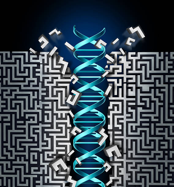 Genetic Research Success stock photo