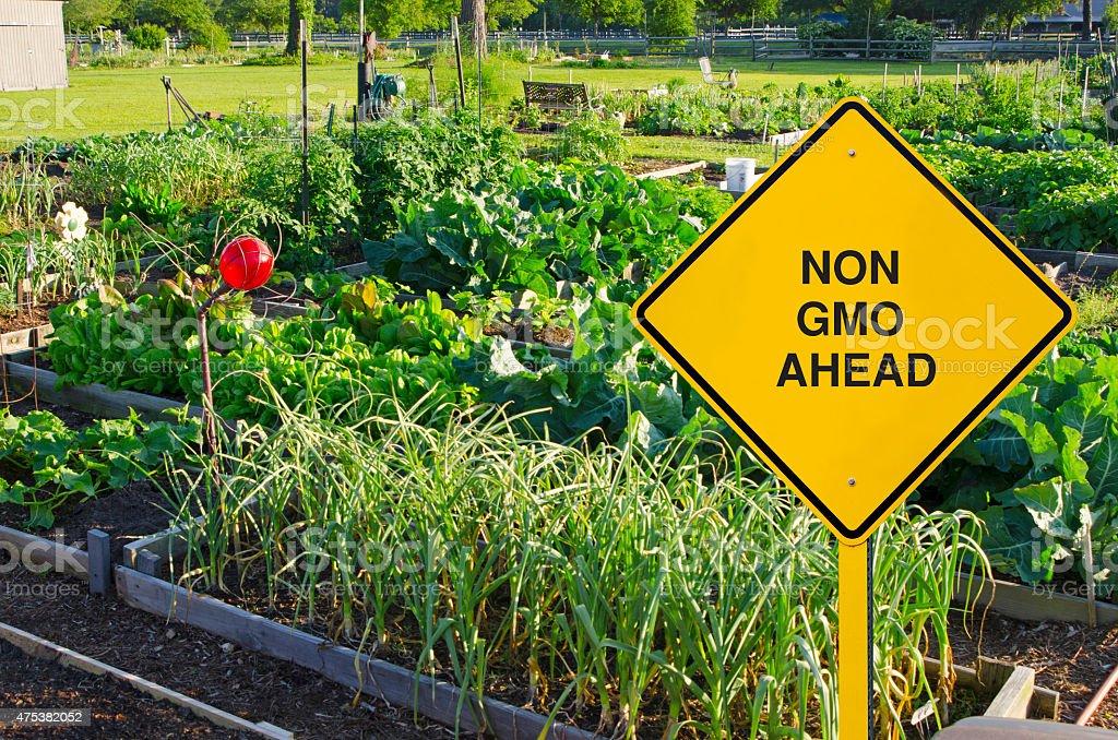 Alimento geneticamente modificado Sinal de estrada em frente ao Jardim orgânico - foto de acervo