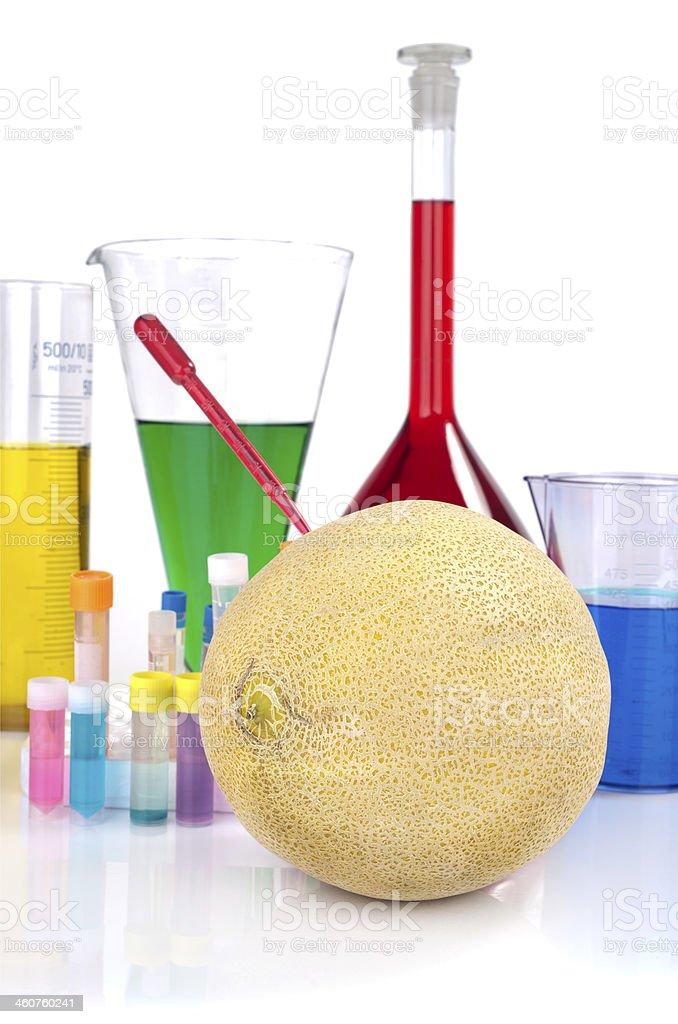 Genetically modified organism - melon and laboratory glassware stock photo