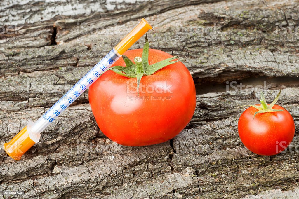Genetically modified organism - ripe tomato with syringes stock photo