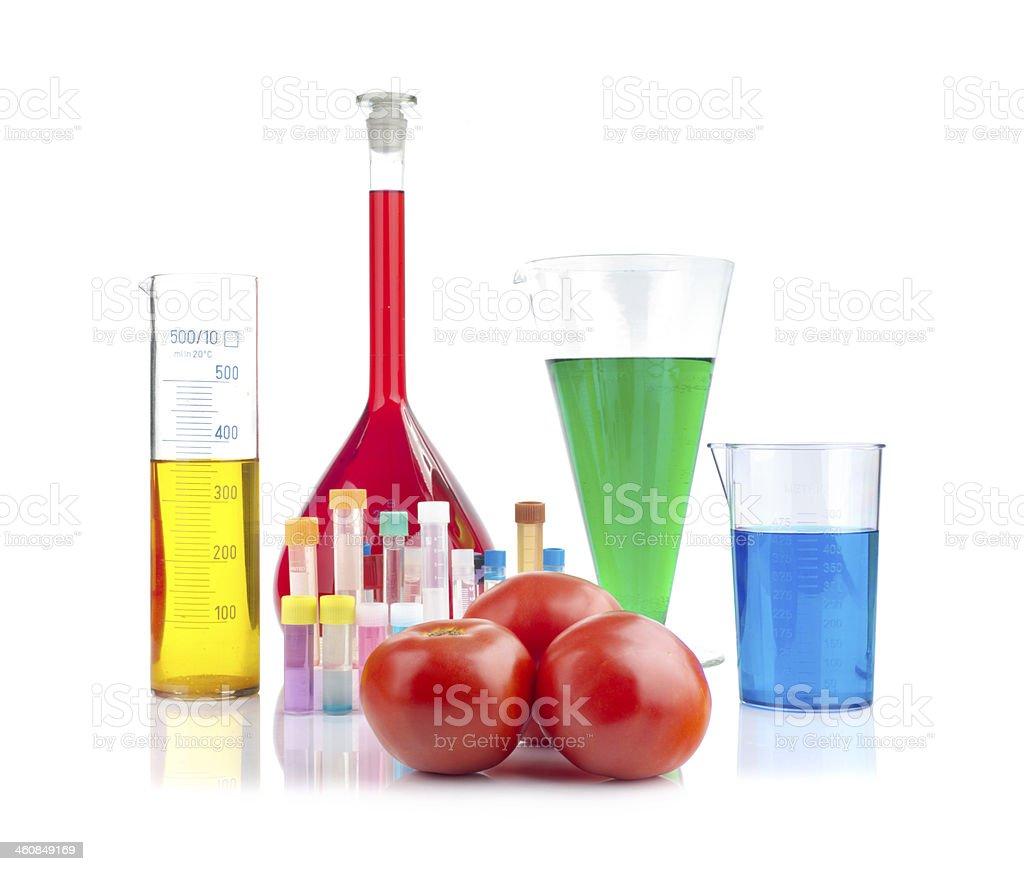 Genetically modified organism - ripe tomatoes and laboratory glassware stock photo