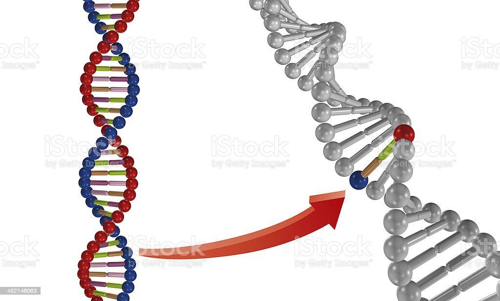 Genetically Modified stock photo