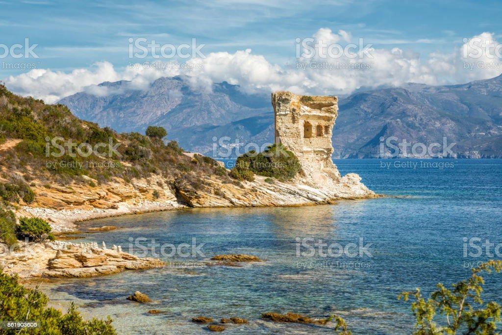 Genueser Turm Mortella in der Nähe von St Florent auf Korsika - Lizenzfrei Agriate Stock-Foto