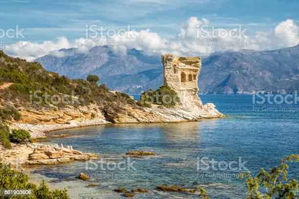 Genueser Turm Mortella In Der Nähe Von St Florent Auf Korsika Stockfoto und mehr Bilder von Agriate