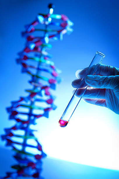 Genome Project with Genetic DNA Sample in Test Tube Vertical stock photo