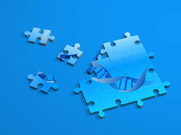 Genom-puzzle – Foto