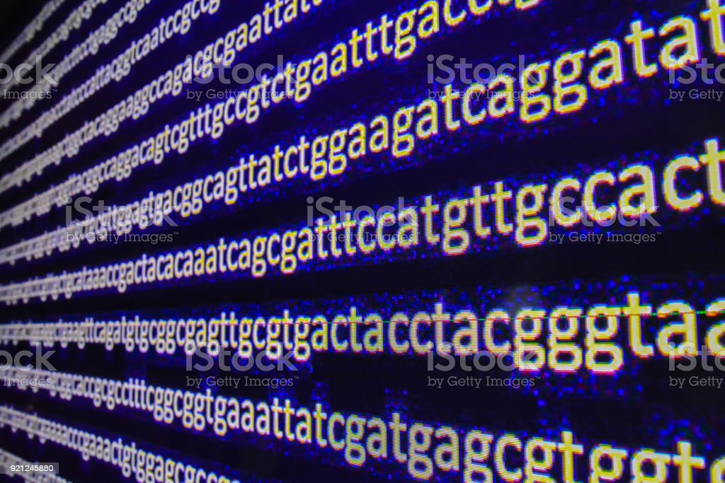 Genome sequencing. stock photo