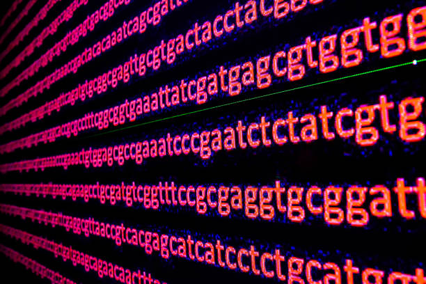 Genomic sequencing. stock photo