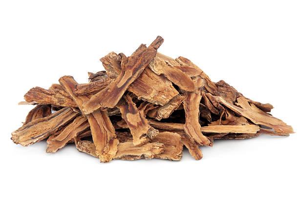Gentian Root stock photo