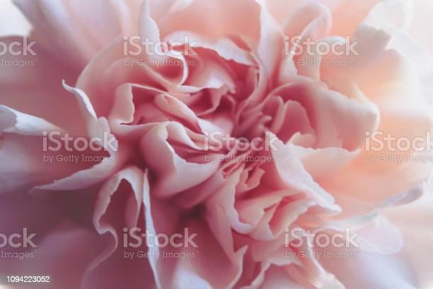 Gentle spring peony closeup picture id1094223052?b=1&k=6&m=1094223052&s=612x612&h=j4w b3yog0aotdqbwblwknxlopvex0cdbjala6kjjxq=