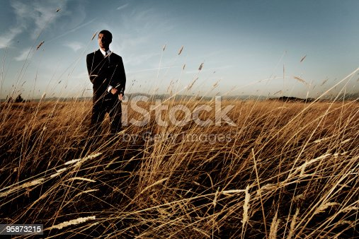 sharp businessman in field, he is a spy really...