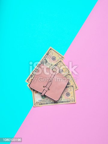 Gently pink wallet with dollars on a pastel background. Let's go shopping!