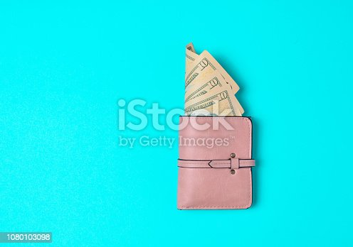 Gently pink wallet with dollars on a blue background. Let's go shopping!