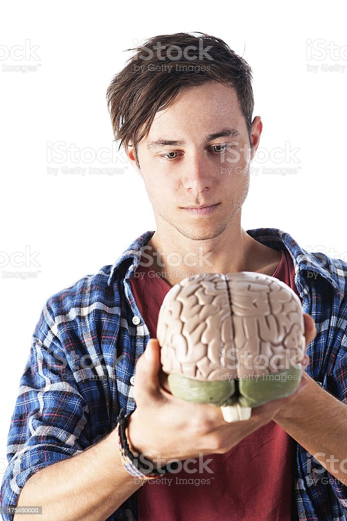 Gently smiling young man looks down at model of brain royalty-free stock photo
