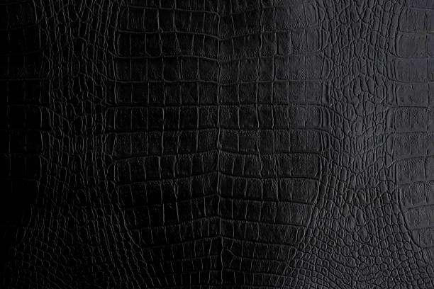 genuine black crocodile leather background in dark tone beautiful texture. - couro imagens e fotografias de stock
