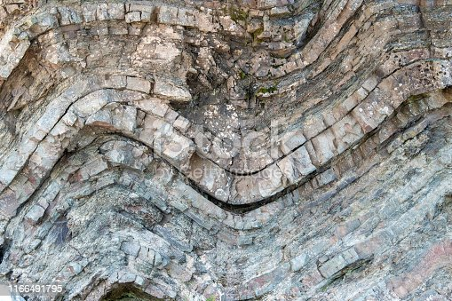 A geological fold in sedimentary rock. The fold is in a cliff. Many layers of sedimentary rock visible. Closeup view.