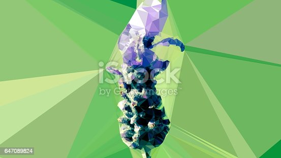 647090632 istock photo Geometric Abstract Florals 647089824