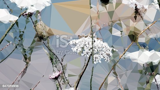 istock Geometric Abstract Florals 647089936