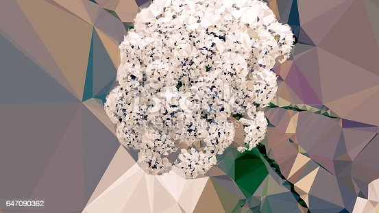647090632 istock photo Geometric Abstract Florals 647090362