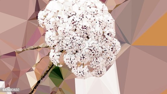istock Geometric Abstract Florals 647090632