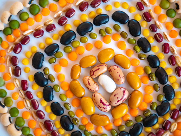 Geometric composition of green and red azuki beans, Spanish beans, brown beans, cannellini beans, tondini beans, borlotti beans, great northern beans, black beans, black eye beans, salugia beans, sorcerer beans, lentils la stock photo