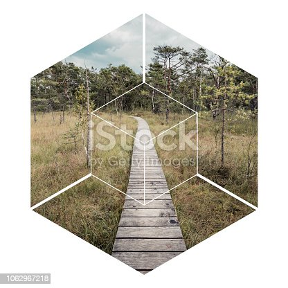 path in nature in a hexagon. Geometric landscape concept.