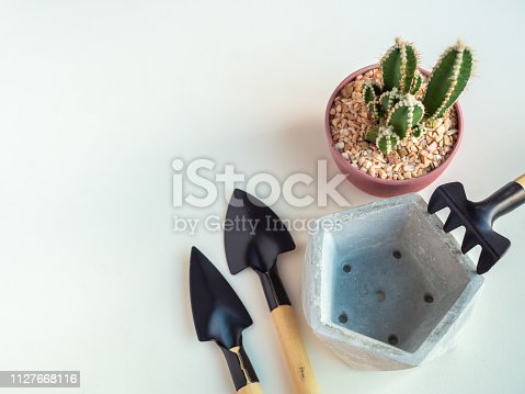Cactus plant in red plastic pot with empty pentagon geometric concrete planters and garden tool set on white background with copy space top view, agriculture concept.