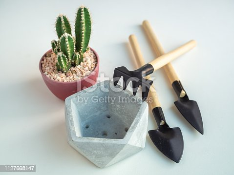 Close-up cactus plant in red plastic pot with empty pentagon geometric concrete planters and garden tool set on white background, agriculture concept.