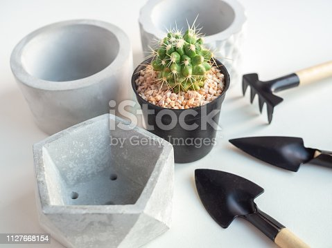 Cactus plant in black plastic pot with empty geometric concrete planters and garden tool set on white background, agriculture concept.
