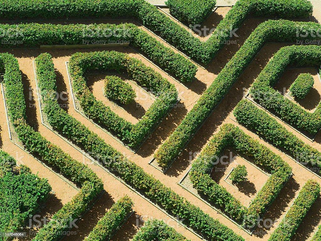 Geometrical garden stock photo