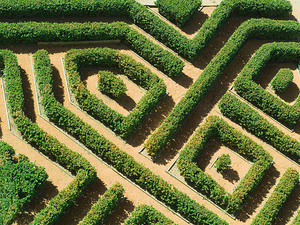 geometrical garden - maze stock photos and pictures