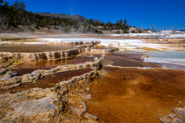 Geothermiegebiet in Mammoth Hot Springs, Yellowstone Nationalpark, Wyoming – Foto