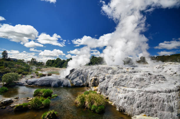 Geothermal area in Rotorua - Te Puia Geothermal area in Rotorua - Te Puia rotorua stock pictures, royalty-free photos & images