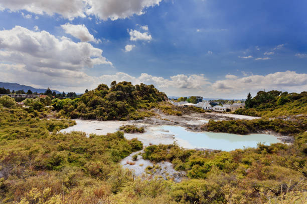 geothermally park New Zealand Hot springs and geysers dominated Whakarewarewa park witch is a geothermal area within Rotorua city in the Taupo Volcanic Zone of New Zealand. whakarewarewa stock pictures, royalty-free photos & images