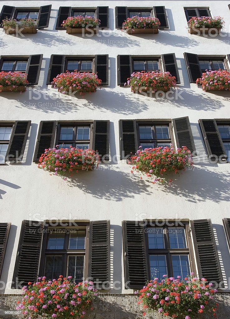 Geranium Flower Window Box royalty-free stock photo