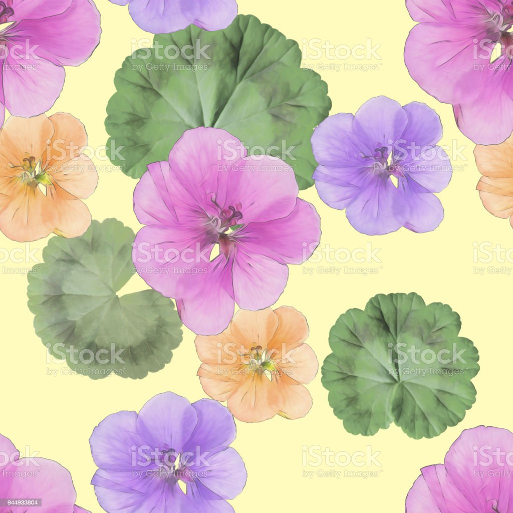 Geranium Pelargonium Seamless Pattern Texture Of Flowers Floral