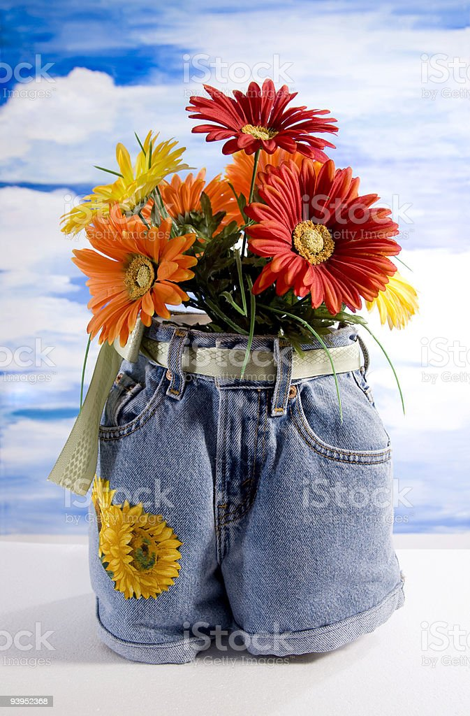 Gerber daiseys in jeans flower pot. royalty-free stock photo