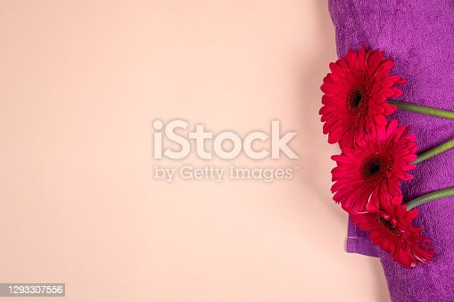 istock Gerbera flower on purple towel. Beauty care and spa concept 1293307556