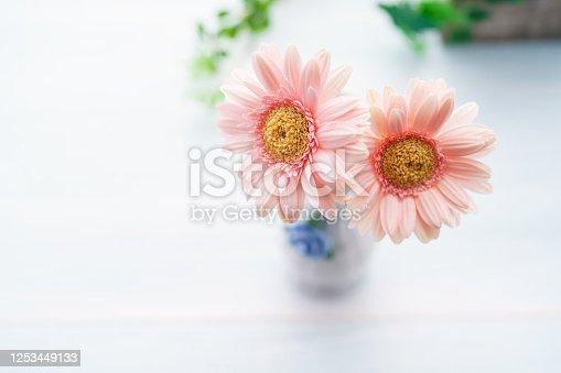 1090975842 istock photo Gerbera flower on wooden table 1253449133