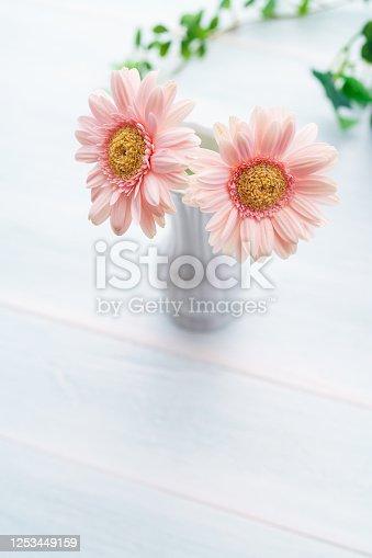 1090975842 istock photo Gerbera flower on wooden table 1253449159