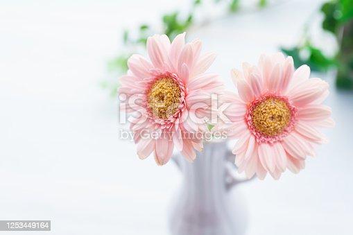 1090975842 istock photo Gerbera flower on wooden table 1253449164