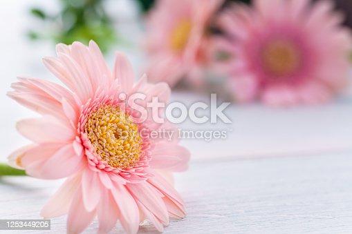 1090975842 istock photo Gerbera flower on wooden table 1253449205