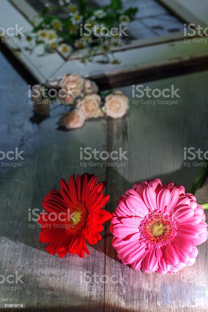 Gerbera Blumen – Foto