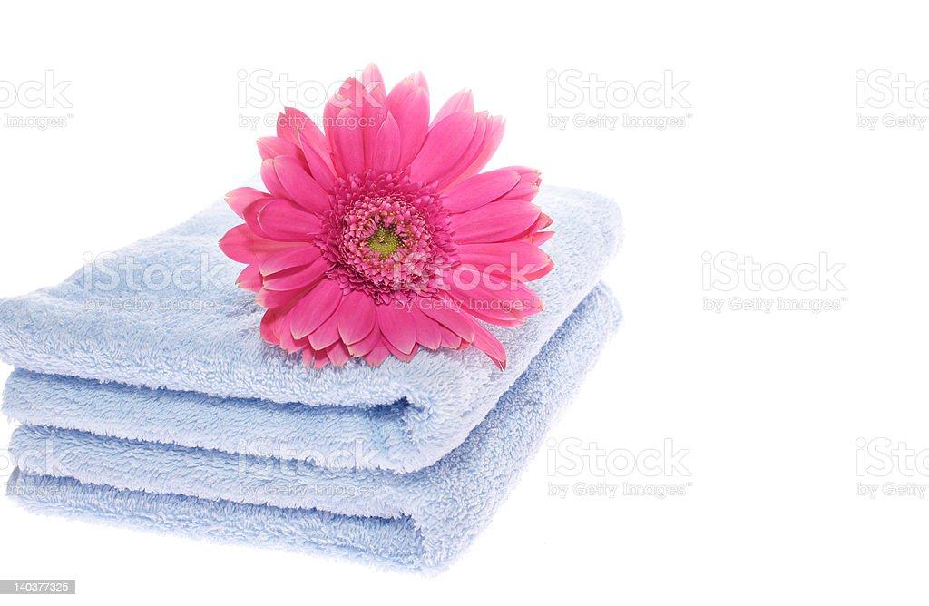 Gerbera on Blue Towel royalty-free stock photo