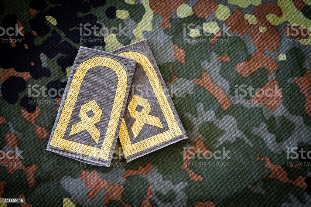 german chief petty officer badges on german military jacket stock photo