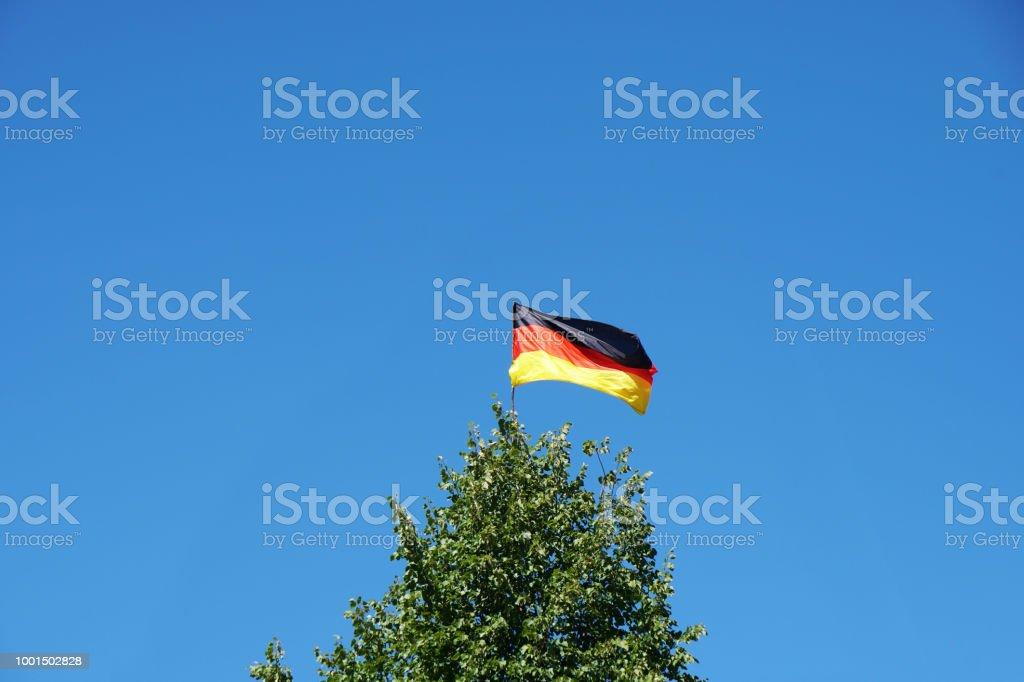 bandeira alemã no topo da árvore - foto de acervo