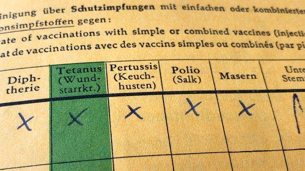 German international certificate of vaccination German international certificate of vaccination with complete records for diphtheria, tetanus, pertussis, polio and measles morbillivirus stock pictures, royalty-free photos & images