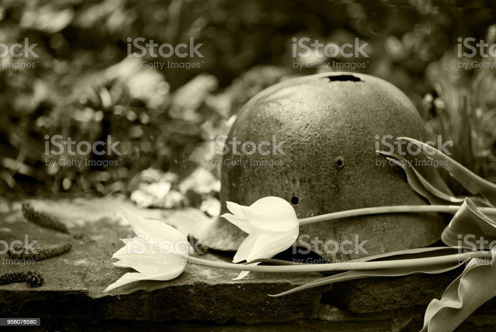 Casco militar antiguo alemán de la segunda guerra mundial con tulipanes blancos - foto de stock