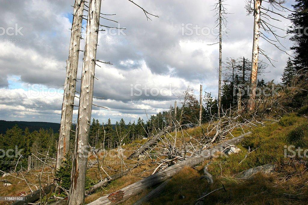 German Taunus mountains stock photo